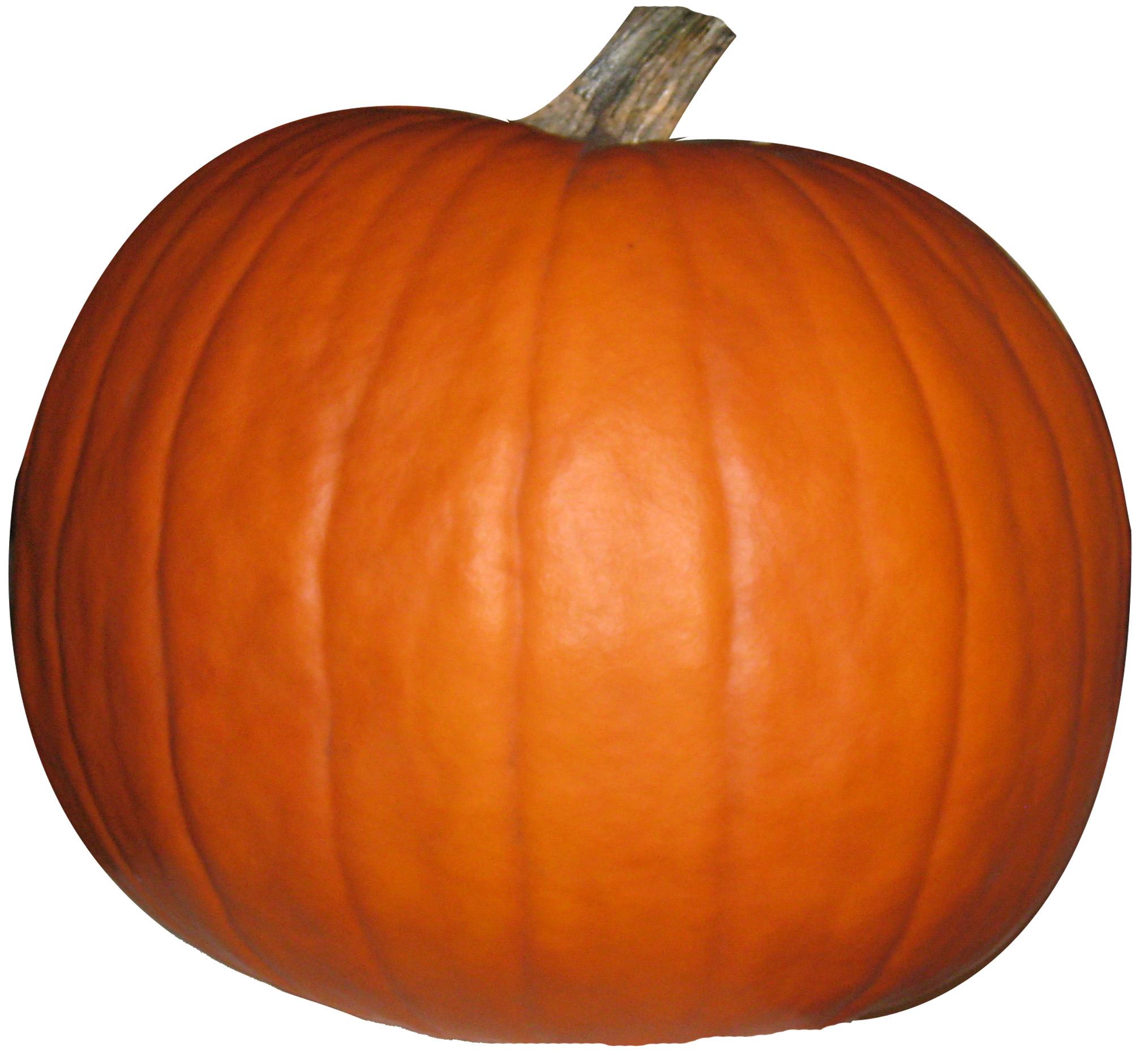 Make Your Own Pumpkin RPC